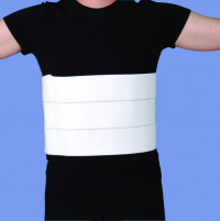 Image of Rib Belt, 2 Panel